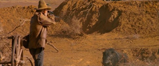 razorback desert
